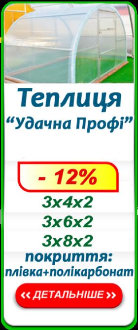 «УДАЧНА ПРОФІ» від 7700 грн.